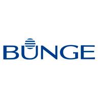 BUNGUE_logo